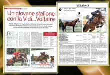Velasko articolo Cavallo e Cavalieri